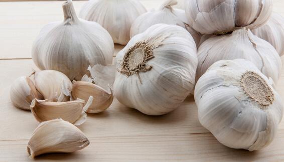 manfaat bawang putih untuk kesehatan dan kecantikan